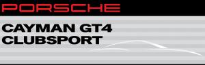 Porsche_cayman_professional_drivers